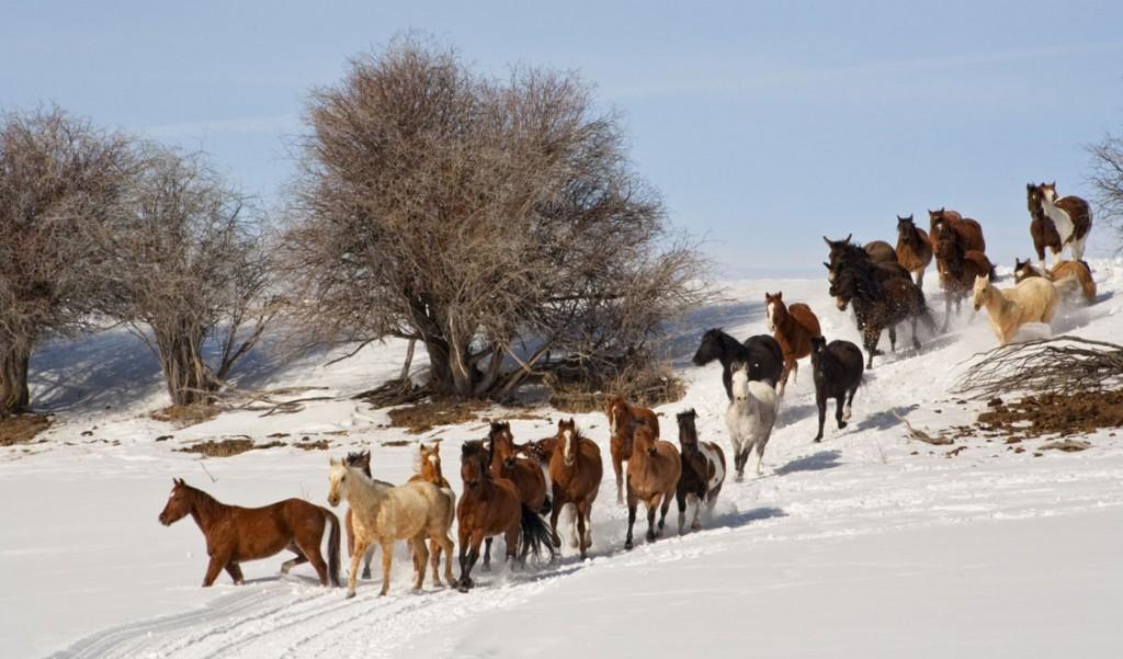 """Top 10 destinazioni sci invernali Vacanze 2014-Quebec""  Top 10 destinazioni sci invernali Vacanze 2014 Top 10 destinazioni sci invernali Vacanze 2014 Quebec"