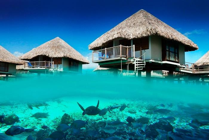 Turismo di Lusso: I migliori viaggi per le Vacanze  Turismo di Lusso: I migliori Viaggi per le Vacanze polinesia